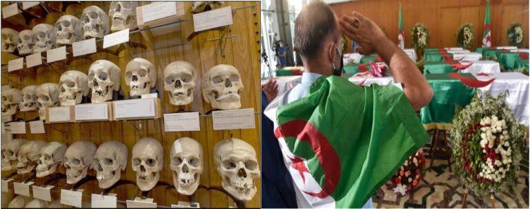 क्रूर फ़्रांसिसी उपनिवेशवाद का उदाहरण हैं अल्जीरियन स्वतंत्रता संग्राम के यौद्धाओं के ये नरमुंड।